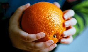 Bridgedale an orange is not an apple