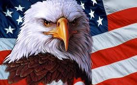 Hockey Players will save our nation American Eagle