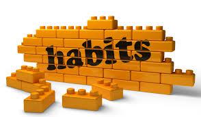 Habits for Youth Hockey Development
