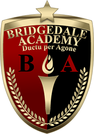 Bridgedale Academy Classical Education for Middle School hockey players